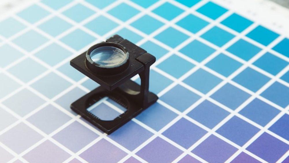palette colori brand identity